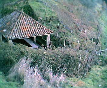 Barroca na 6ªfeira, 31 de Dezembro de 2004