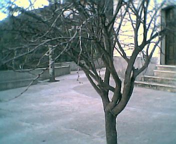 Largo da Capela visto de sul para norte na 6ªfeira, 31 de Dezembro de 2004