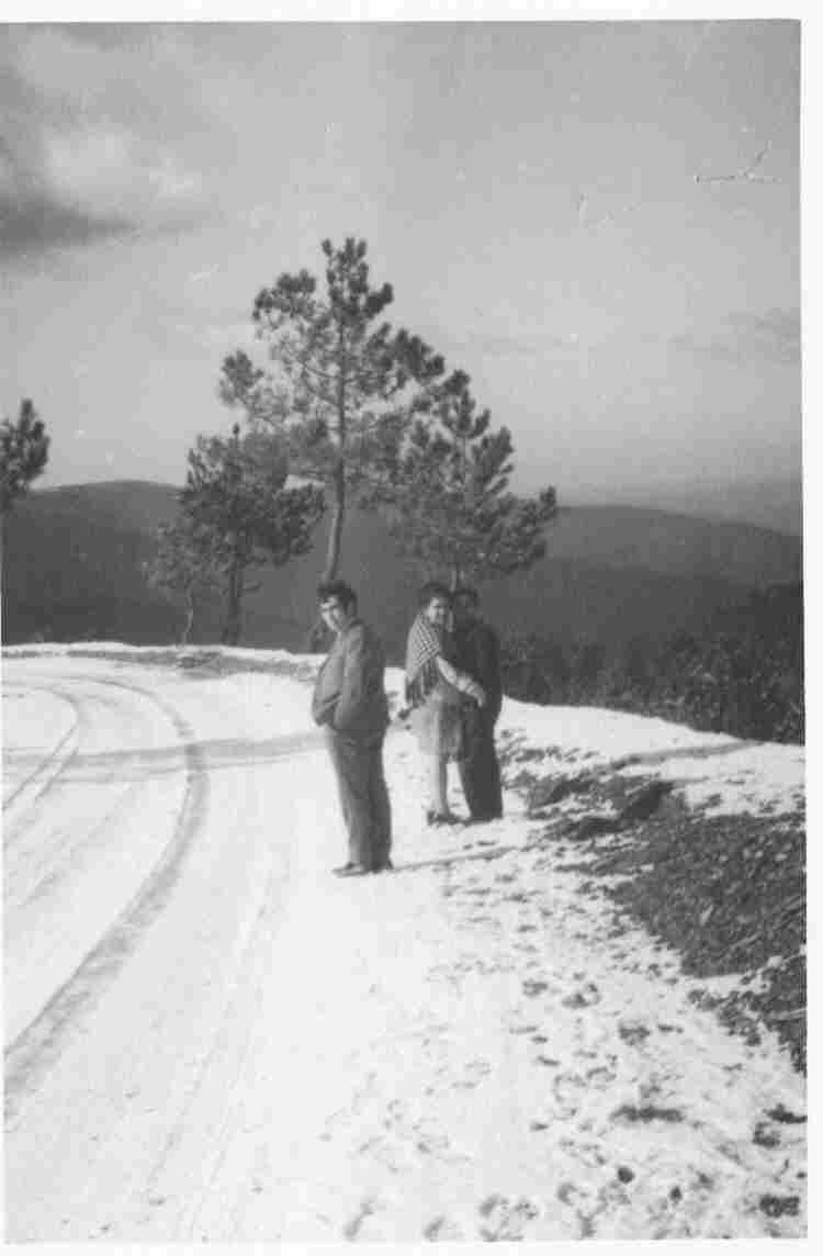Antiga estrada no Monte Frio (geogr.) no séc. XX