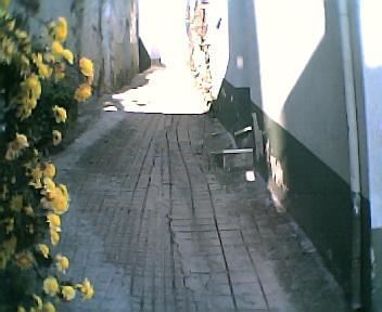 Rua nas Penedas no Sábado, 1 de Janeiro de 2005